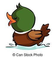 Swimming duck Vector Clip Art Royalty Free. 427 Swimming duck.