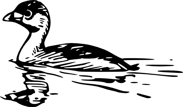 Swimming Duck clip art Free vector in Open office drawing svg.