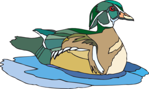 Swimming Brown And Green Duck Clip Art at Clker.com.