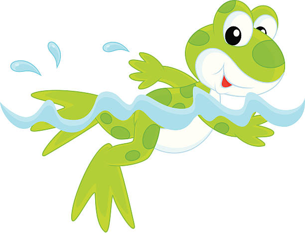 Frog Swimming Cartoon Swimming Animal Clip Art, Vector Images.