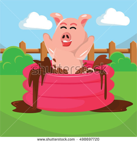 Swimming Pig Stock Photos, Royalty.