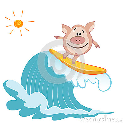 Cartoon Pig Surfer Royalty Free Stock Image.