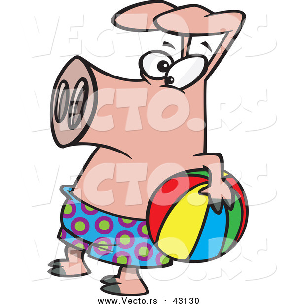 Vector of a Cartoon Pig Wearing Swim Shorts While Holding a.