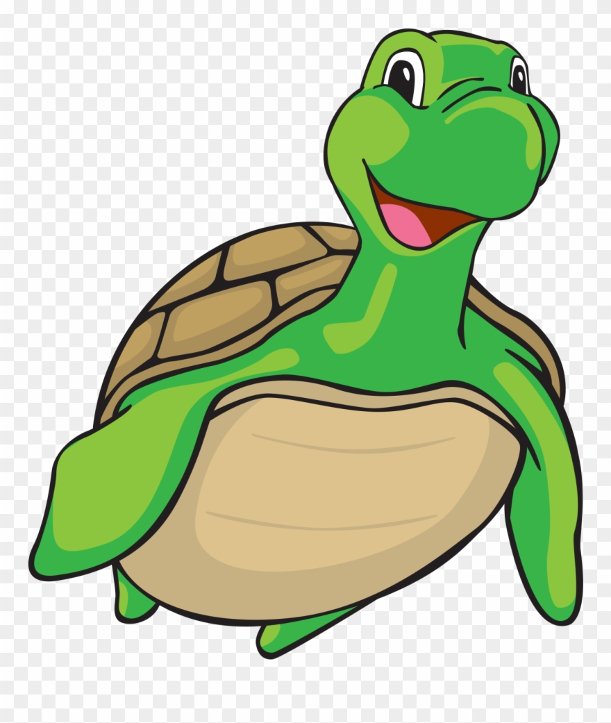 Swimming Turtle Cartoon Png Clipart (#1185656).