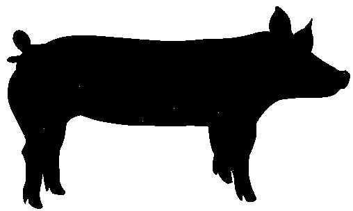 Market Swine Clipart.