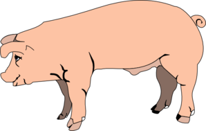 Pig Outline Free Clipart.