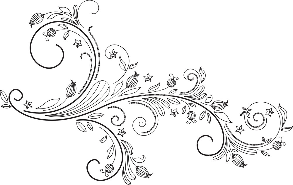 Floral Swirl Vector Element Royalty.