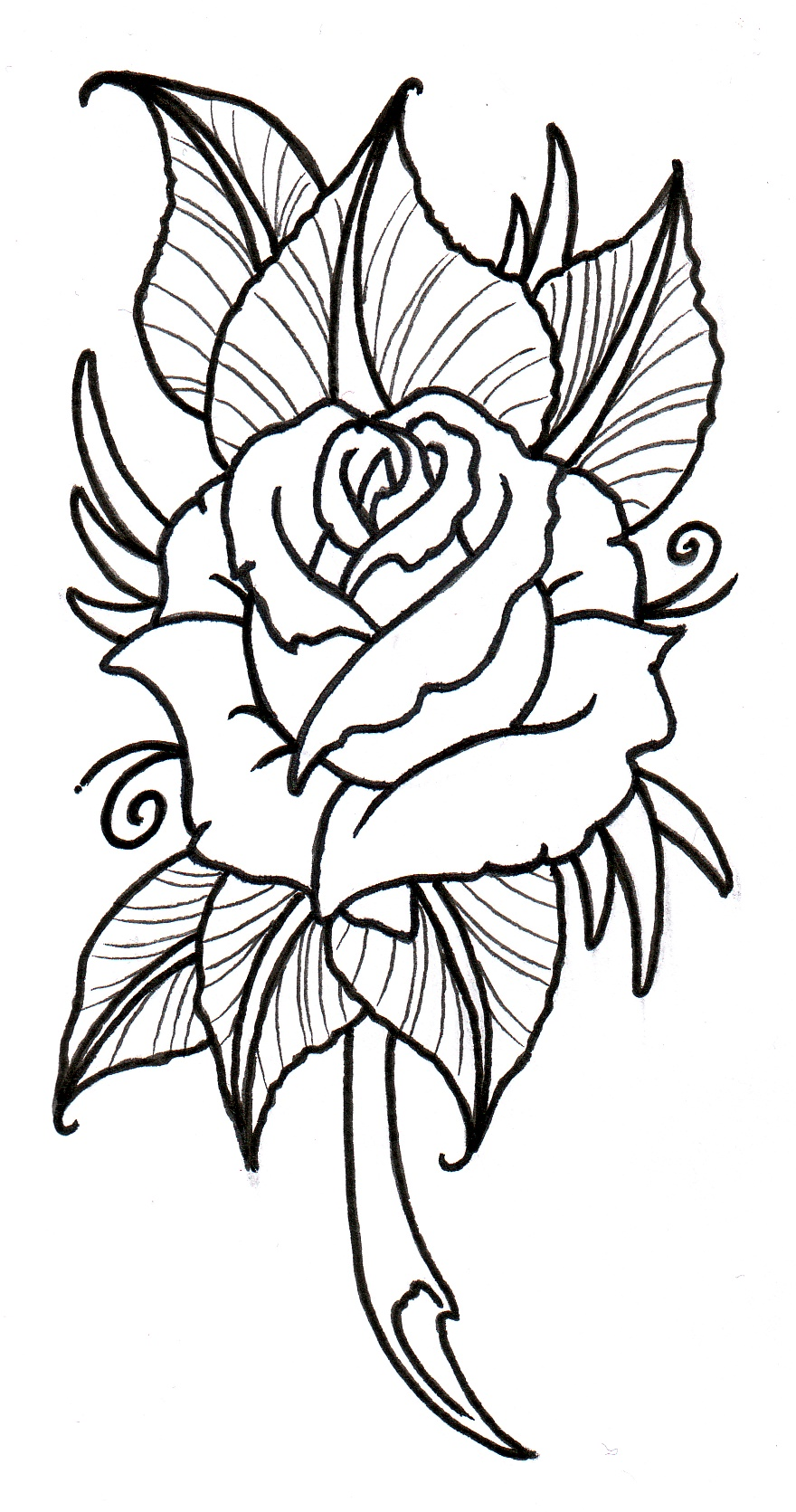 Roses free rose clipart public domain flower clip art images and.
