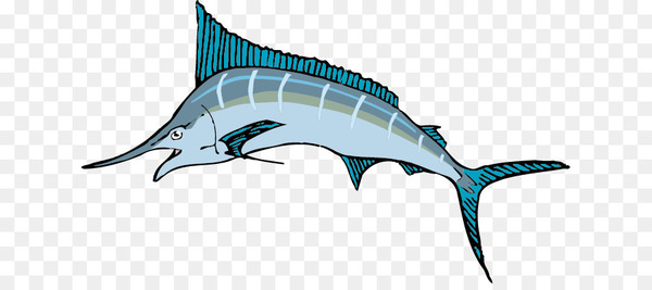 The Blue Marlin Swordfish Sailfish Clip art.