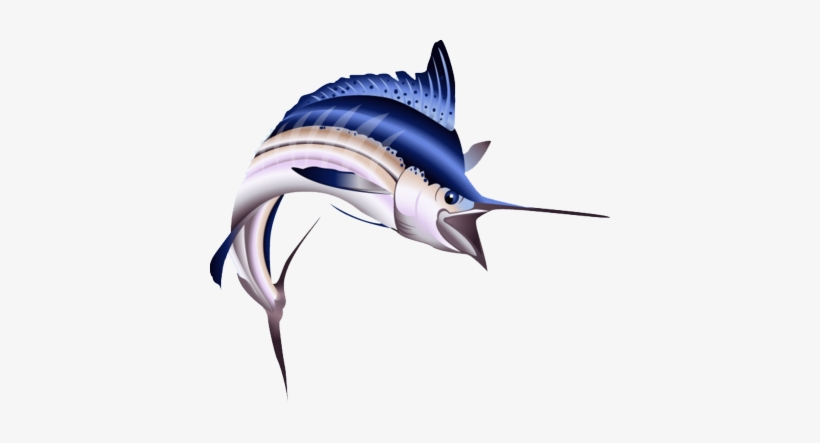 Fish,Sailfish,Marlin,Atlantic blue marlin,Fish,Ray.