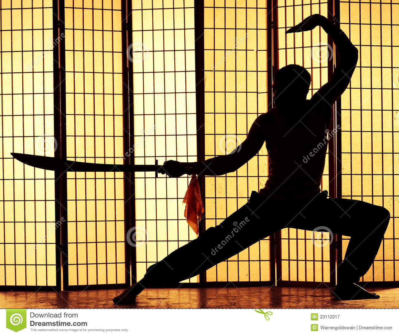 Swordsman Silhouette Royalty Free Stock Images.
