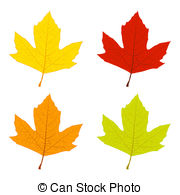 Vector Clip Art of Sycamore Autumn Leaf.