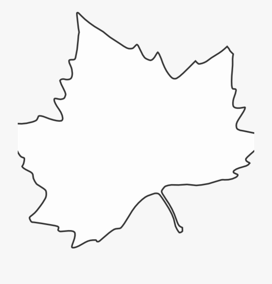 Leaf Outline Clipart Printable Clip Art For Leaves.