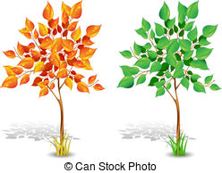 Sycamore tree Vector Clip Art Illustrations. 286 Sycamore tree.