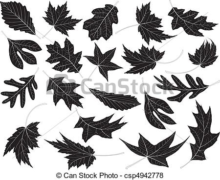 Sycamore Clip Art and Stock Illustrations. 477 Sycamore EPS.