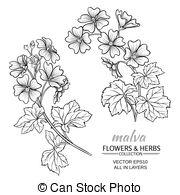 Sylvestris Clipart and Stock Illustrations. 39 Sylvestris vector.