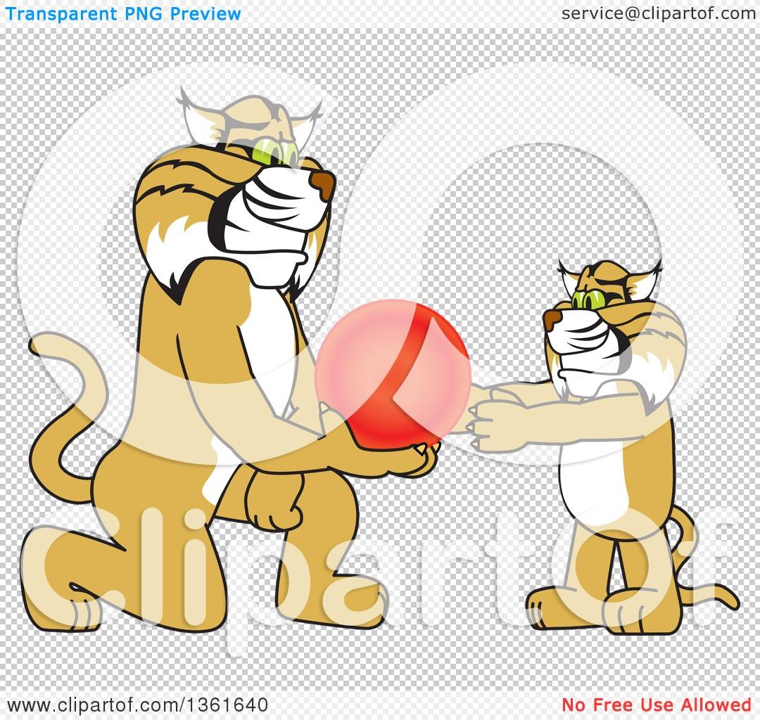 Clipart of a Bobcat School Mascot Character Giving a Ball to a Cub.