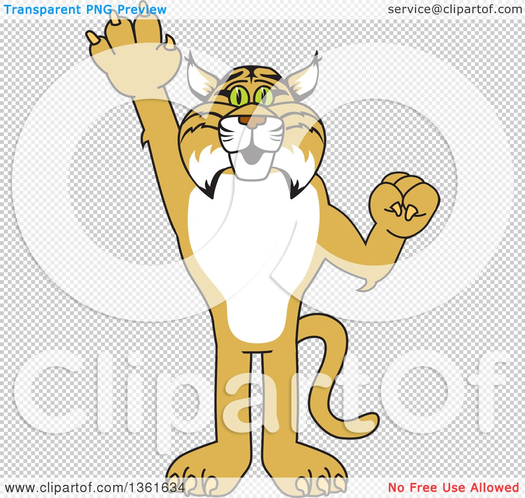 Clipart of a Bobcat School Mascot Character Holding up a Hand.