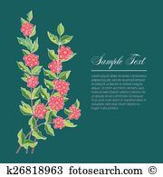 Waxberry Clipart and Illustration. 5 waxberry clip art vector EPS.