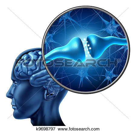 Stock Illustration of Human Nerve Cell Synapse Receptor k9698797.