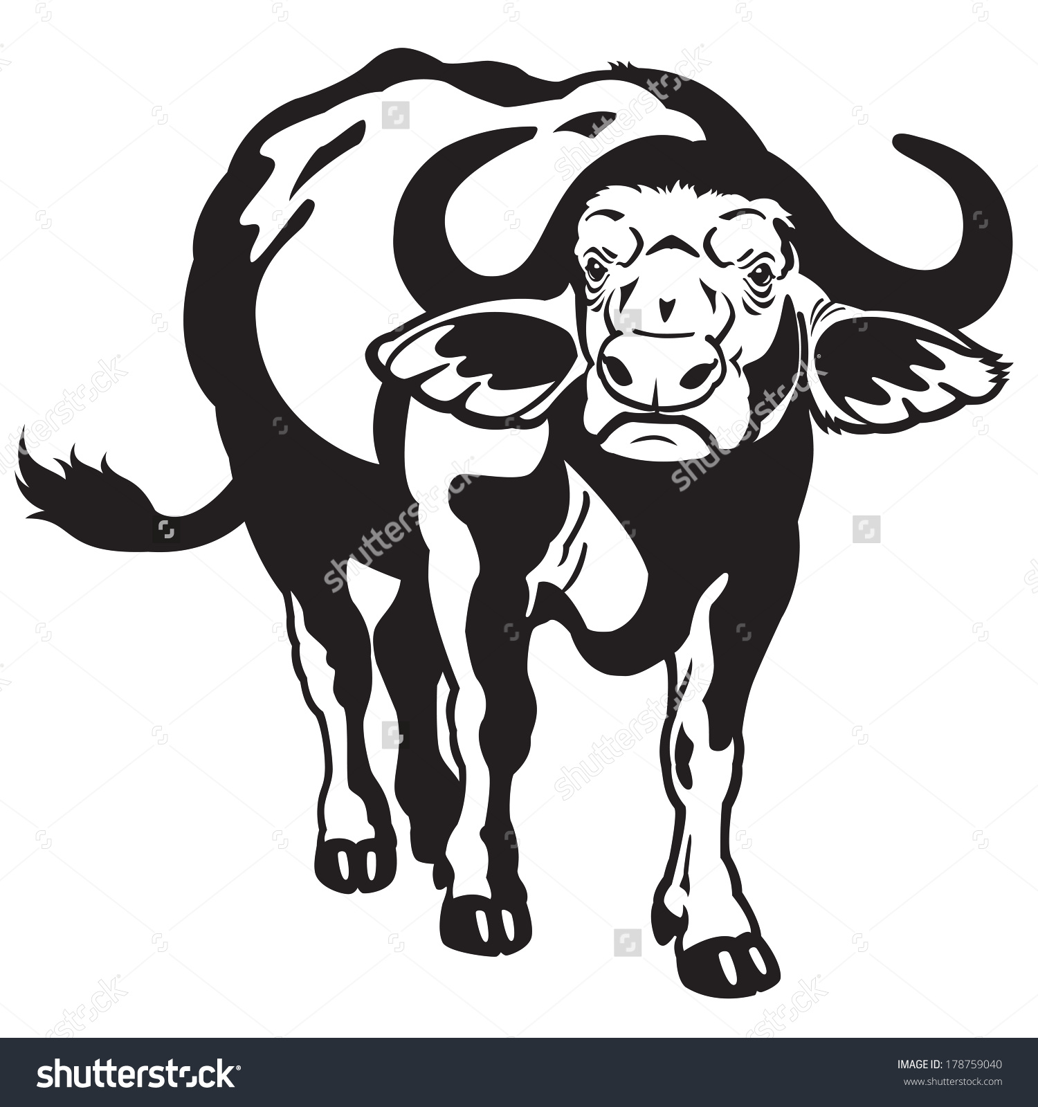 African Cape Buffalo Syncerus Caffer Black Stock Vector 178759040.
