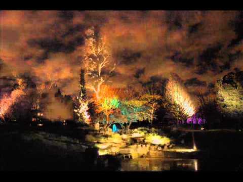The Enchanted Woodland At Syon Park..