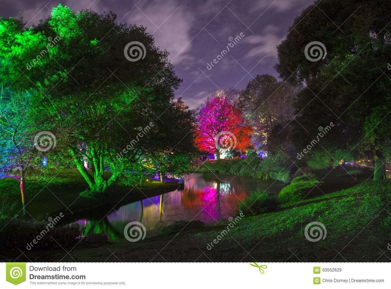 Enchanted Woodland In Syon Park Stock Photo.