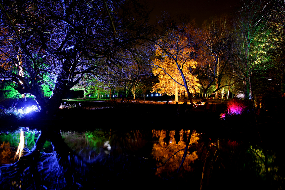 Enchanted Woodland at Syon Park London.