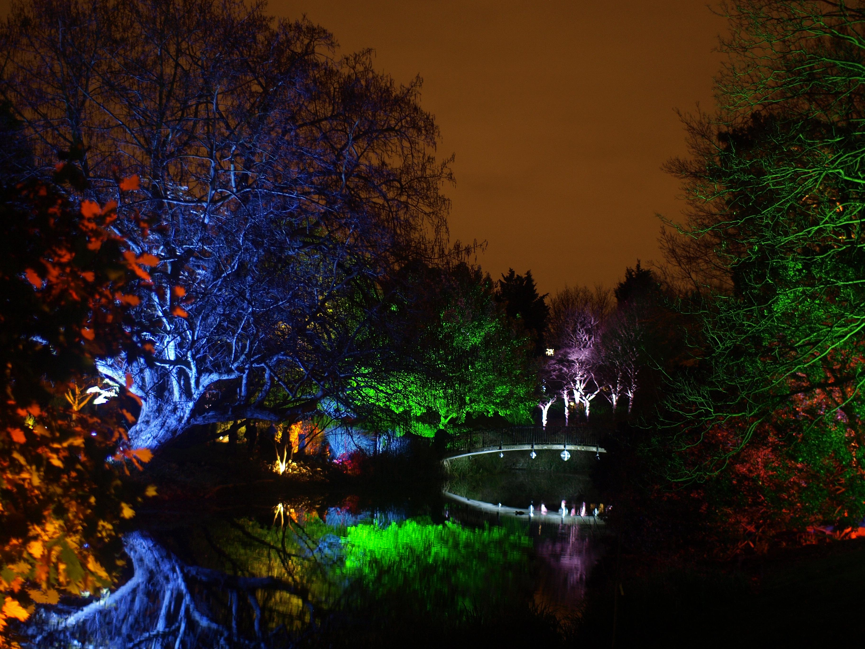 File:Syon Park Enchanted Woodland 3.jpg.
