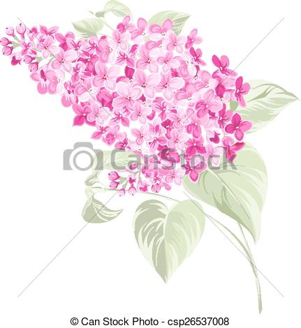 Vector Clipart of Spring syringa flowers background..
