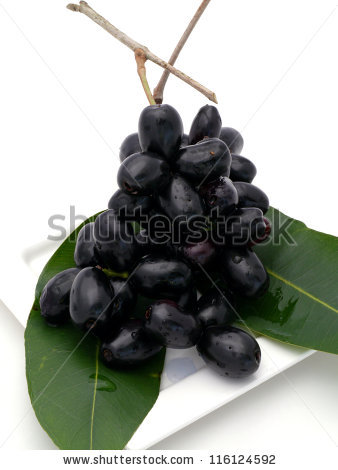Syzygium Cumini Stock Photos, Royalty.