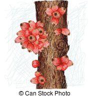 Syzygium Vector Clipart Royalty Free. 20 Syzygium clip art vector.