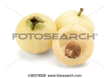 Pictures of Syzygium jambos or rose apple k36379028.
