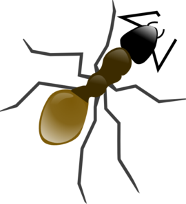 Totetude Ant Insect Clip Art at Clker.com.