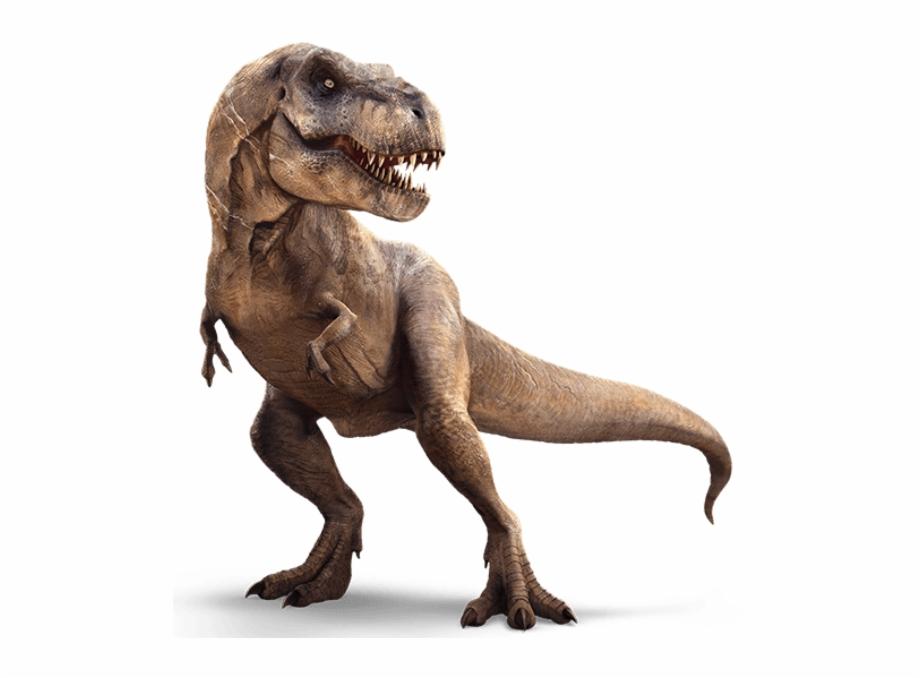 Drawn Tyrannosaurus Rex Jurassic World T Rex.