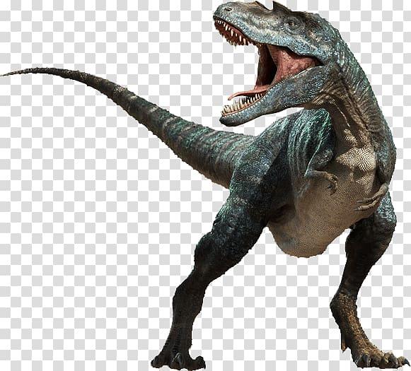 Green dinosaur graphic, Tyrannosaurus Dinosaur , t rex.