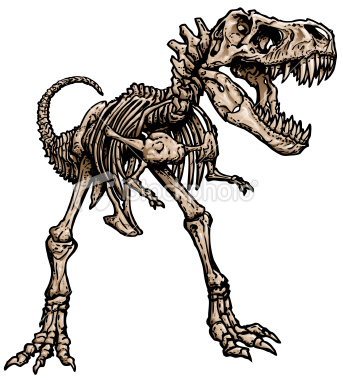 T Rex Skeleton Clipart, Download Free Clip Art on Clipart Bay.