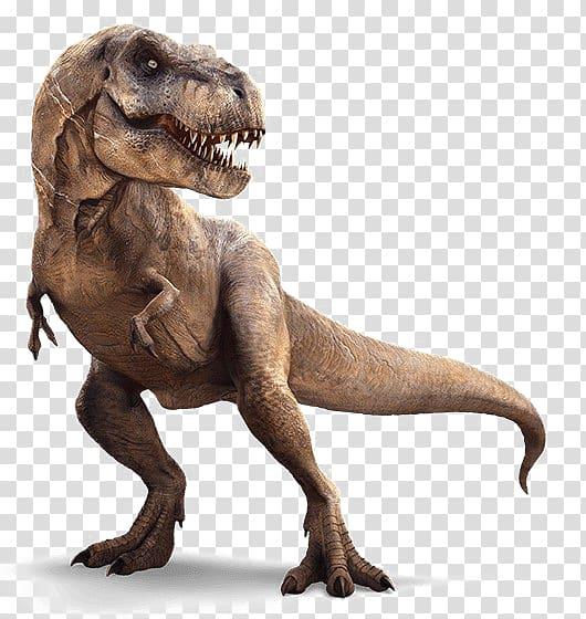 Tyrannosaurus rex illustration, Velociraptor Carnotaurus.