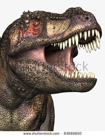 Tyrannosaurus Rex Closeup Illustration Head Eye Stock Illustration.
