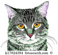 Tabby cat Clip Art Illustrations. 1,142 tabby cat clipart EPS.