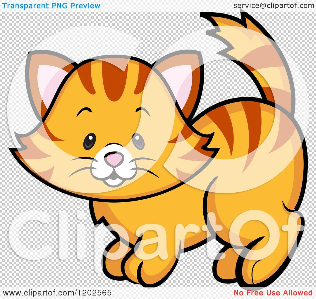 Ginger Tabby Clip Art.