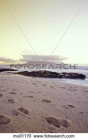 Stock Photography of Table Bay, Table Mountain and Capetown.