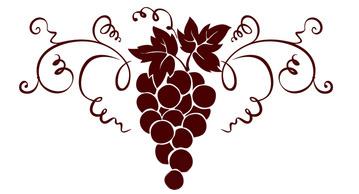 Table Grapes Farms Greece.