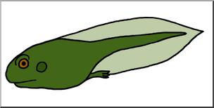 Clip Art: Tadpole with Hind Legs Color I abcteach.com.