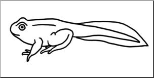Clip Art: Tadpole with Legs B&W I abcteach.com.