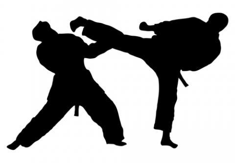 Free Taekwondo Cliparts, Download Free Clip Art, Free Clip.
