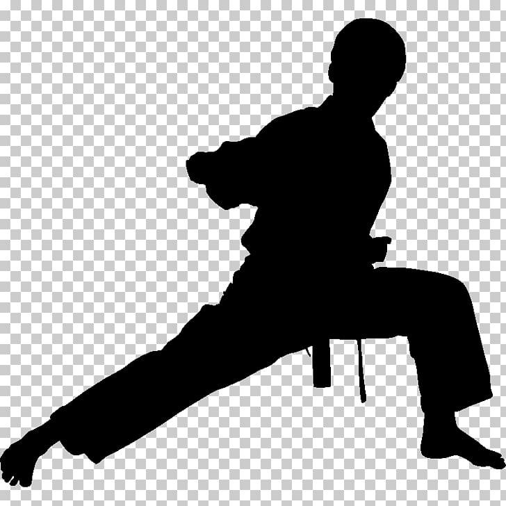Chinese martial arts Karate Wall decal Taekwondo, taekwondo.