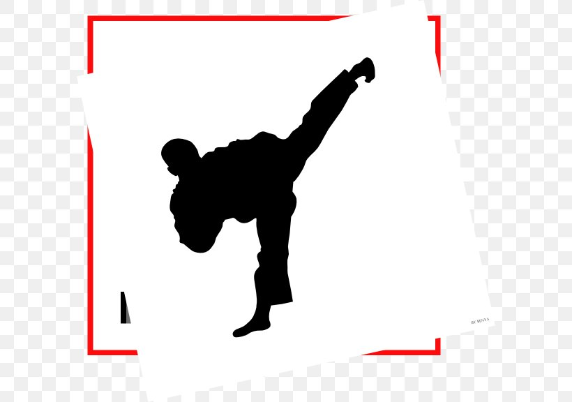 International Taekwon.
