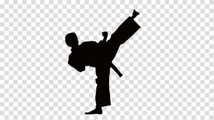 Silhouette of martial artist illustration, Karate Wall decal.