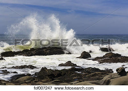 Picture of USA, California, Sonoma County, Pacific Coast, Salt.